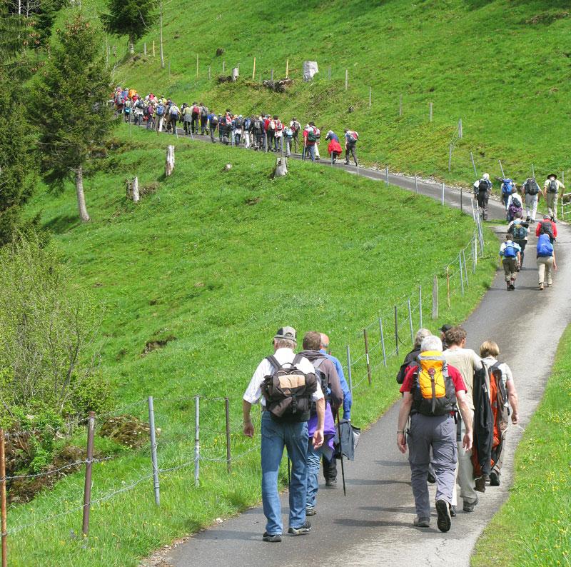 Unterwegs zwischen Sattel und St.Jost, hoch zum Morgartenberg. | © 2012 Matthias Bättig